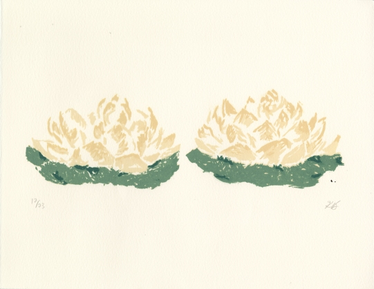 6.Lotus_FlowersKB